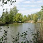 Das Schleienloch ist ein Naturjuwel zwischen Rhein und Dornbirner Ach.